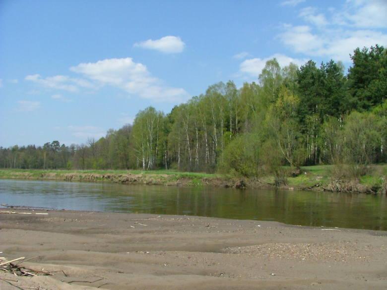 Pilica należy do rzek, które zachowały swój naturalny bieg<br />