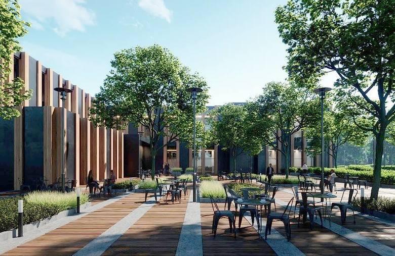 WIZUALIZACJE nowej siedziby Regionalnej Dyrekcji Lasów Państwowych w Szczecinie