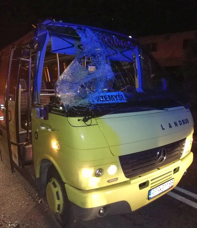 Bus zniszczony przez spadające gałęzie.