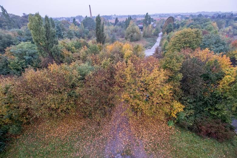 Szachty to unikalne miejsce w skali Poznania. To ulokowany w dolinie Strumienia Junikowskiego, między Komornikami, Luboniem, a Poznaniem zespół glinianek