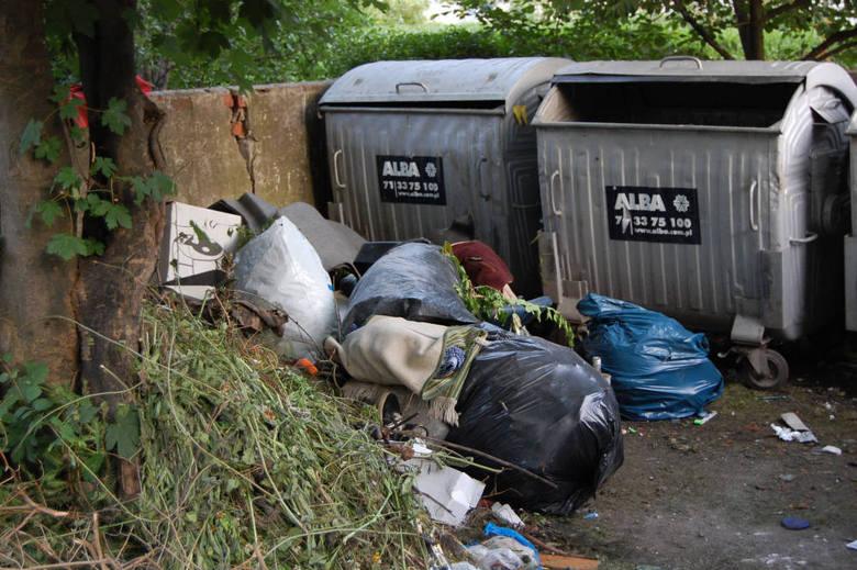 Tak wygląda otoczenie koszy na śmieci na wrocławskim Sępolnie