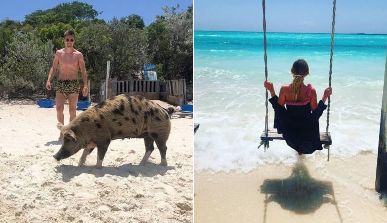 Krzysztof Piątek w wodzie ze świniami i rekinami. Wakacje pełne wrażeń na Bahamach [ZDJĘCIA]