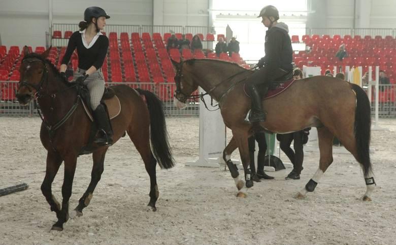 720 końskich kopyt, czyli Cavaliada w Lublinie