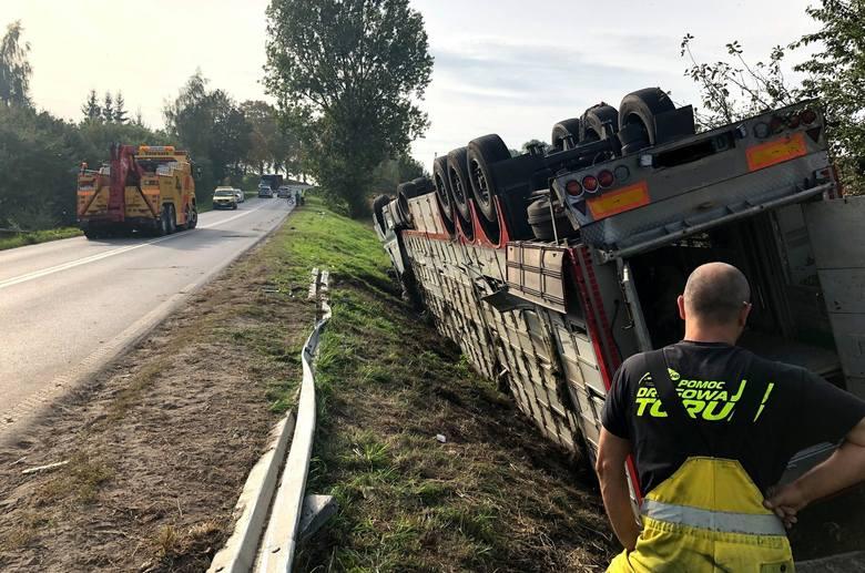 Nieostrożność i brawura ukraińskiego kierowcy doprowadziły do wypadku, w którym ucierpiały przewożone przez niego świnie. Część zwierząt trzeba było