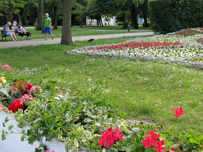 Niedziela w inowrocławskich Solankach. Tak było 6 czerwca 2021 r. w tym pięknym parku zdrojowym [zdjęcia]