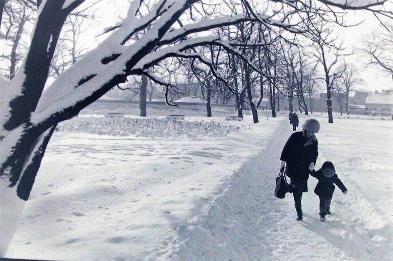 Park Kultury i Wypoczynku w scenerii zimy stulecia.