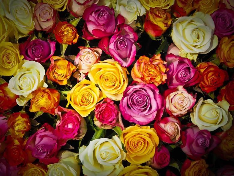 Dzień Kobiet to idealna okazja, by wysłać SMS z życzeniami. Pamiętaj o bliskich Ci kobietach 8 marca i złóż im życzenia!