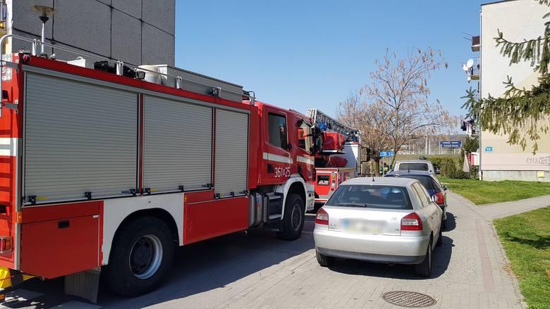 Do zdarzenia doszło w czwartek na ul. Rogozińskiego w Przemyślu. Wyjechały trzy zastępy strażaków. Na miejscu okazało się, że podczas prac remontowych,