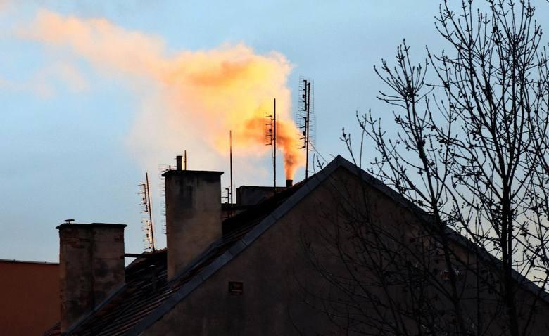 Jeżeli popatrzymy się na zanieczyszczenie pyłami zawieszonymi czy też rakotwórczymi związkami, to w Polsce padają rekordowe zanieczyszczenia.