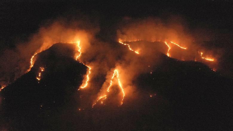 Zdjęcie pokazujące płonące lasy deszczowe w stanie Tocantins