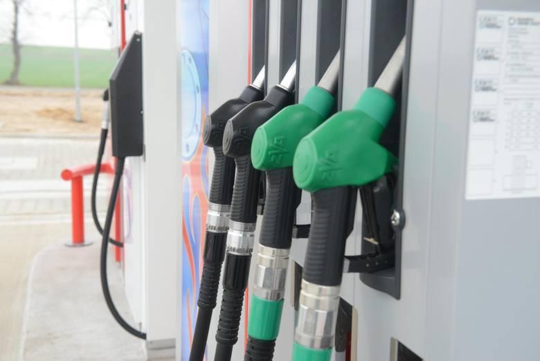 Duży wkład do inflacji ma wzrost cen paliw (28,1% r/r, 3,6% m/m; tu nie należy spodziewać się w najbliższym czasie przełamania trendu).