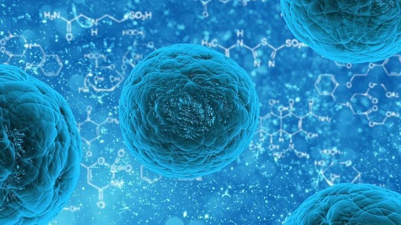 W powiecie lipskim prawie 170 osób objętych kwarantanną z powodu koronawirusa