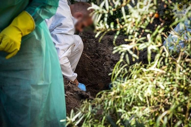 Kości kobiety - najpewniej zaginionej - były przysypane ziemią. Być może też sprawa Grażyny Ż. stałaby w miejscu, gdyby nie praca i odważne decyzje śledczych z Prokuratury Rejonowej w Wejherowie