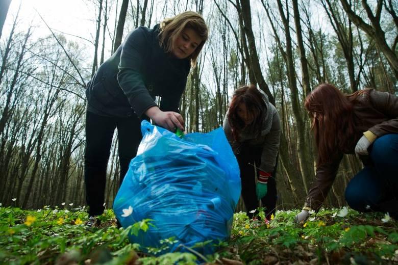 Las Zwierzyniecki. Weganie posprzątali rezerwat (zdjęcia, wideo)