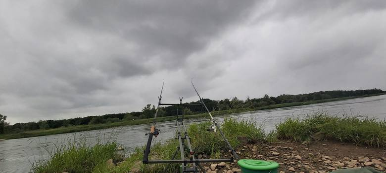 A tak J. Kolej łowi metodą feeder. To stanowisko na główce nad Odrą w okolicach Kostrzyna