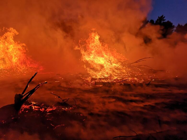 Piekło na ziemi – tak w skrócie strażacy podsumowują widok, jaki zastali na terenie zrębu w pobliżu miejscowości Koziczyn (gmina Cybinka), gdzie we wtorek,