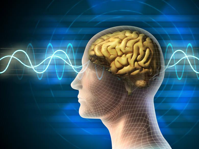Siła ludzkiego umysłu jest ogromna. Może być uzdrawiająca, jak i niszcząca