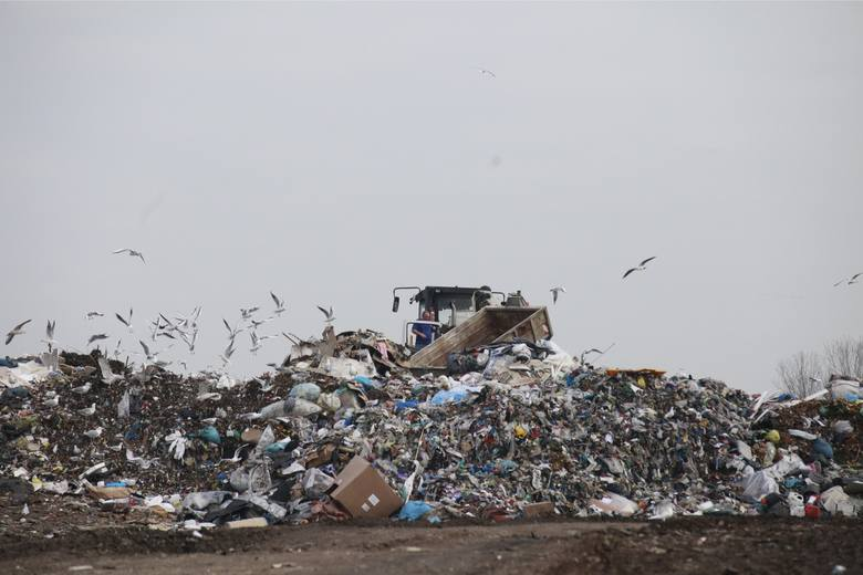 Ostateczna wysokość podwyżki za wywóz śmieci w Opolu ma być ustalona i zatwierdzona jesienią tego roku.