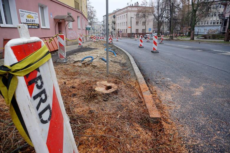 Dodatkowa wycinka drzew w centrum Lublina. Powód? Przebudowa Al. Racławickich i ul. Lipowej