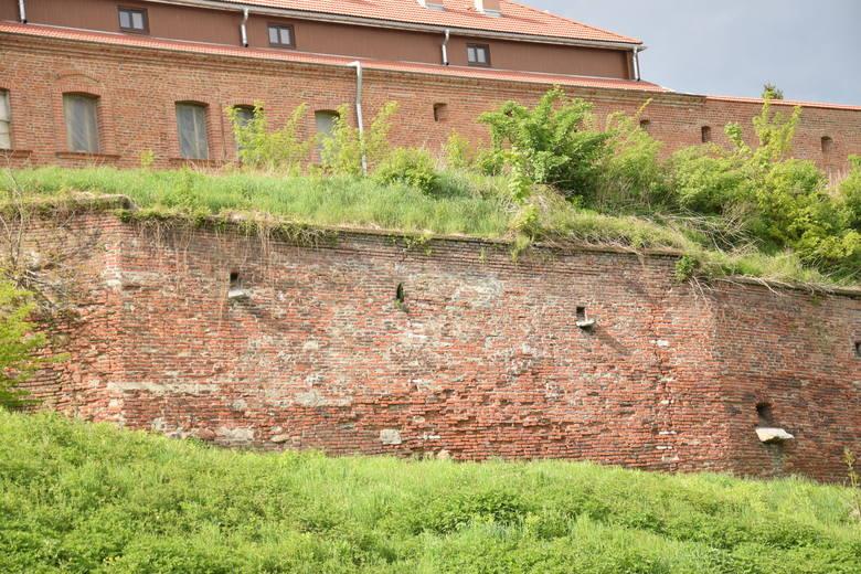 Tak wygląda początek muru oporowego, który w dalszym biegu oddala się od górnego