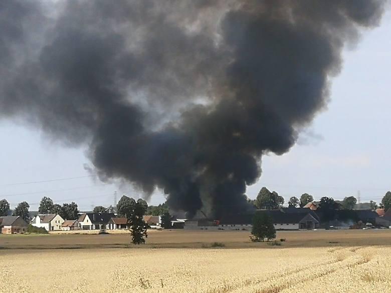 Pożar gospodarstwa w Chróścinie. Rolnik, który szukał żony, stracił majątek. W internecie organizowana jest zbiórka