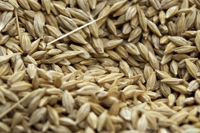 Wysokie ceny zbóż w tym roku to nie tylko polska specjalność. Podobnie jest na rynkach światowych. Przekładają się one na wzrost cen produktów zbożowych