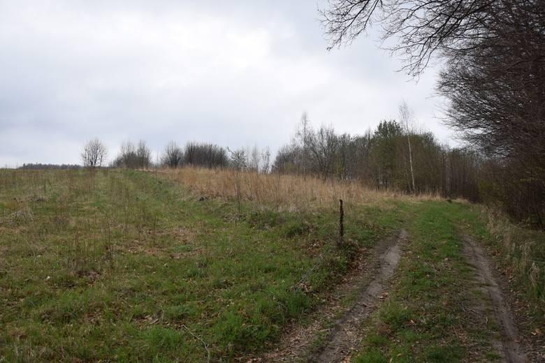 Zamek znajdował się w tym miejscu, na najwyższym wzgórzu - mówi Aleksander Bratkowski, sołtys Chodakówki.