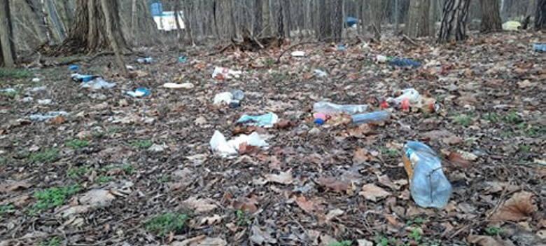Mieszkańcy: w okolicy Batorego w Zielonej Górze jest bałagan. Wyrzucanie śmieci do lasu to wielki obciach. A ludzie wciąż to robią!