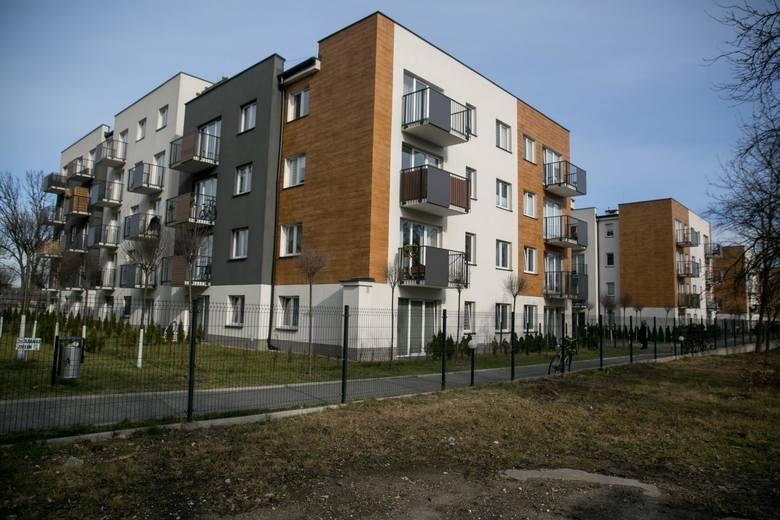 Kraków. Smog, korki i zła jakość komunikacji - to przeszkadza mieszkańcom