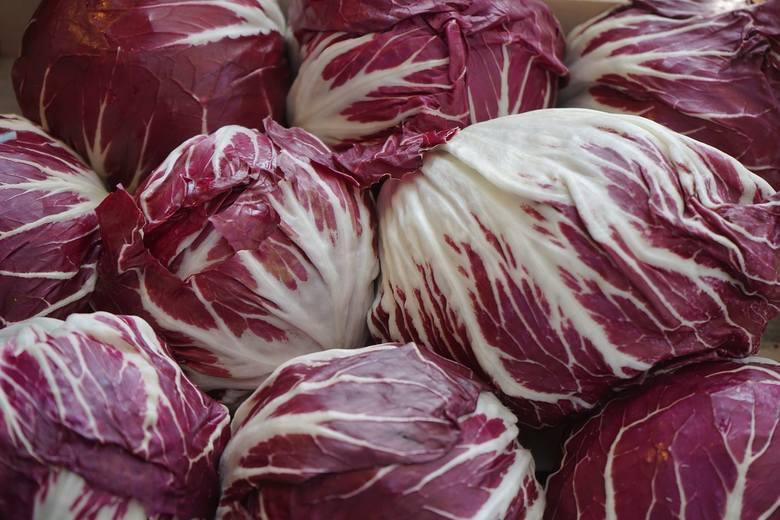 cykoria, warzywo,