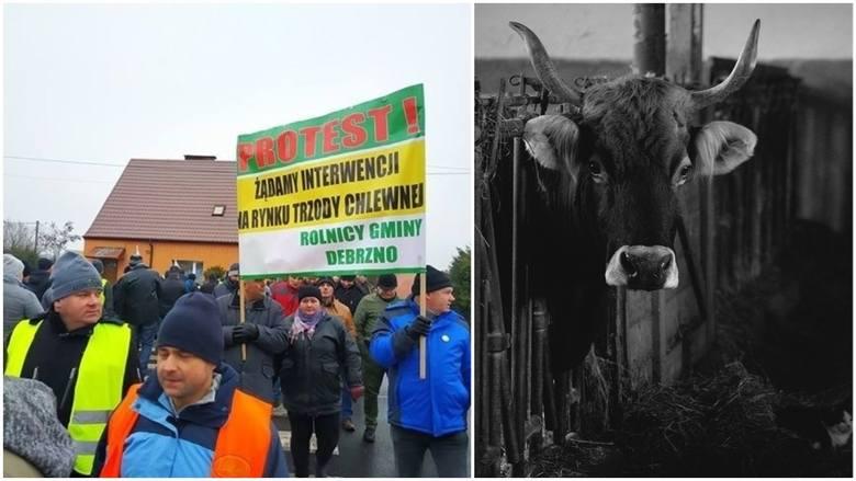 Agro wieści tygodnia: protesty, afera wokół ubojni, ASF, targi w Nadarzynie 2019