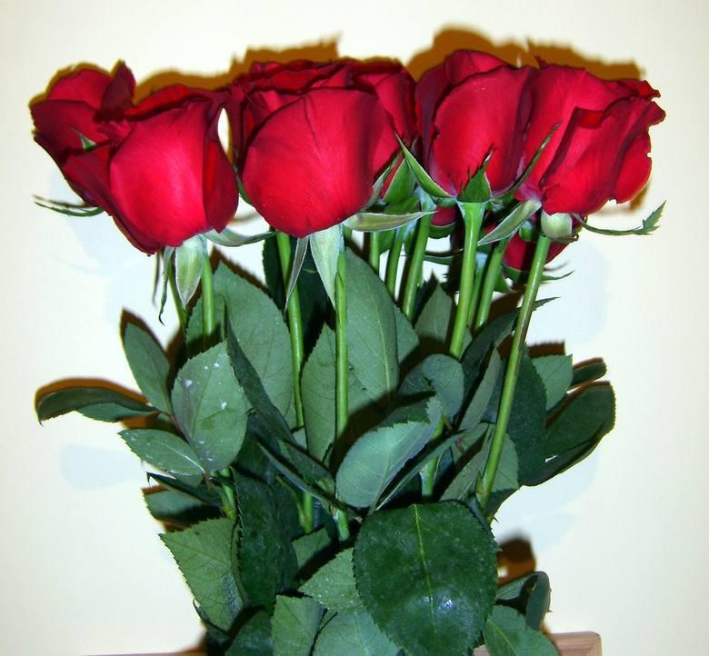 Chyba każda kobieta lubi otrzymywać... kwiaty