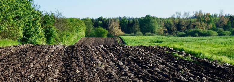 Licytacje komornicze rolniczych sprzętów. Ciągnik za 7,5 tys., dojarka za 1,2 tys. zł