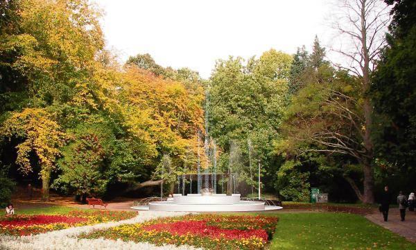 Rewitalizację drugiej części parku wykona Selfa