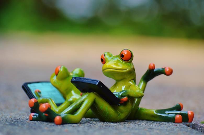 Wakacje to nie dla wszystkich czas odpoczynku. Chociaż teoretycznie każdy powinien wyjechać na urlop, niektórzy mogą zapomnieć o czasie wolnym. Przekonaj