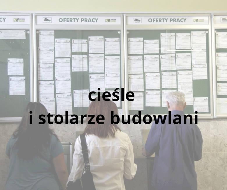 Najbardziej poszukiwane zawody w woj. lubelskim. Sprawdź, czy Twoja profesja znalazła się na liście (prognoza na rok 2019)