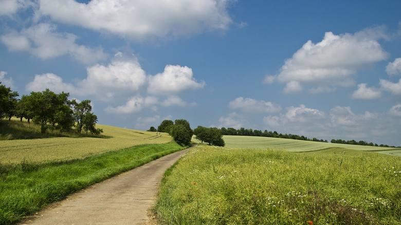 Ustawa o obrocie ziemią rolną. Nowoczesna zgłosiła projekt noweli