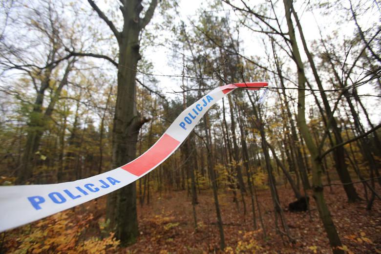 Zabójstwo noworodków w Ciecierzynie, morderstwo burmistrza Dietera Przewdzinga i Samanty z Jasienia, bestialskie zabójstwo w Grodkowie dla pary butów