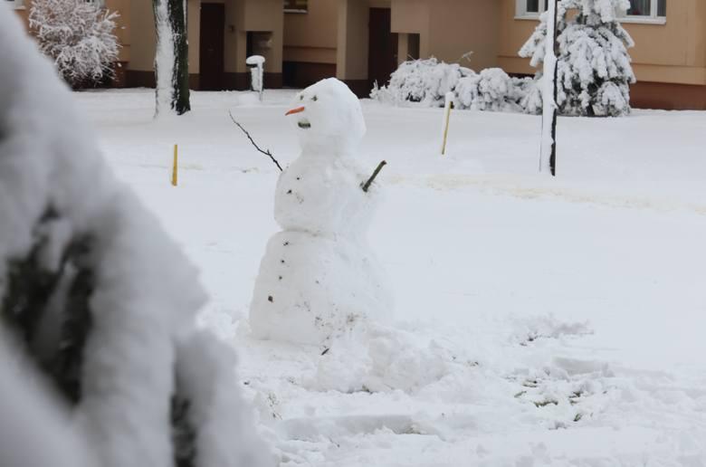 Zima przyszłą dziś do Łodzi. Zobaczcie, jak pięknie wygląda zaśnieżona Łódź [ZDJĘCIA]