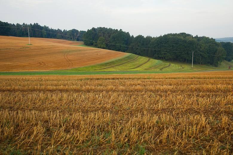 Dochód z hektara przeliczeniowego 2019 - obowiązuje podany przez GUS we wrześniu 2018