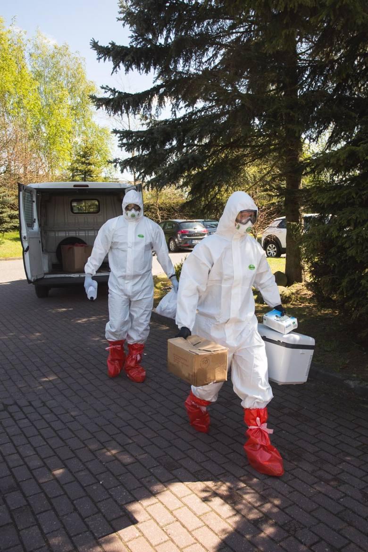 W przedszkolu w Brzozówce nie ma kolejnych zakażeń koronawirsuem
