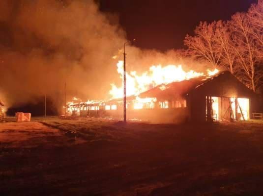 Pożar w gospodarstwie koło Przewozu. Spłonęły dwa budynki, trwa akcja strażaków