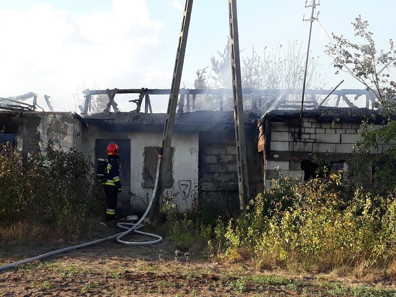 Około godz. 17.30 w pustostanie przy ul. Byszewskiej w Bydgoszczy wybuchł pożar. Straż pożarna opanowała już ogień. Na szczęście nie ma żadnych ofiar.-
