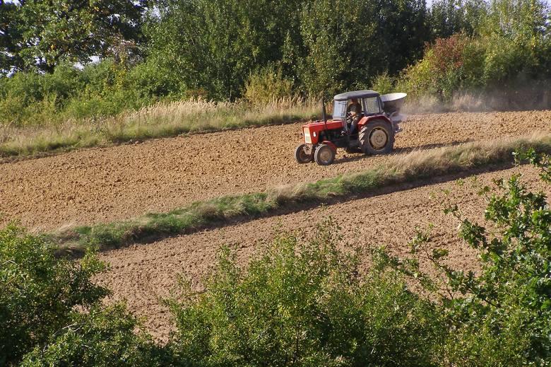 Umiejętność prowadzenia ciągnika i obsługi maszyn  rolniczych jest mile widziana u kandydatów do pracy w gospodarstwie.