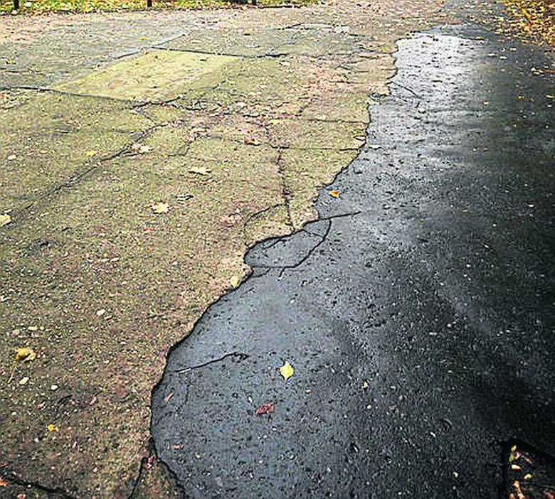 Remont asfaltu w łódzkim zoo