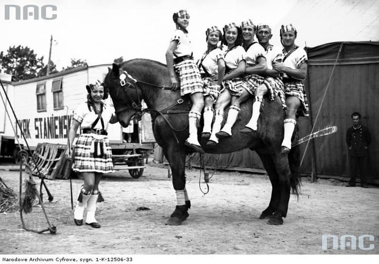 Grupa woltyżerów w strojach scenicznych na koniach pozująca do zdjęcia.