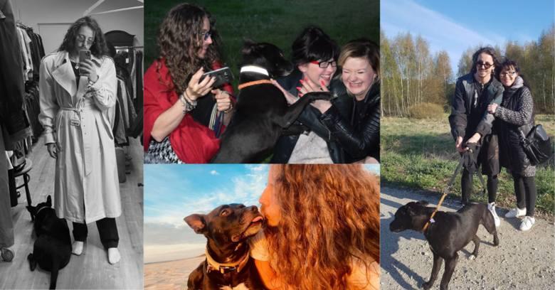 Jeszcze nieco ponad dwa lata temu Hektor był porzuconym psem po ciężkich przejściach, którym zaopiekowała się fundacja Mondo Cane. Wcześniej pies przybłąkał