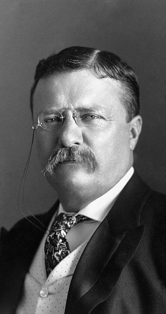 Ludwik Hammerling w latach 20. w Polsce. Wtedy właśnie był politycznym macherem PSL-Piast i senatorem z ramienia tej partii