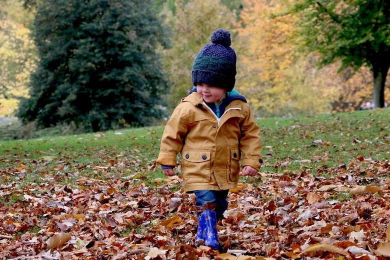 Jaka będzie pogoda w piątek 8 listopada, sobotę 9 listopada oraz niedzielę 10 listopada? Sprawdź prognozę na najbliższe dni ---->