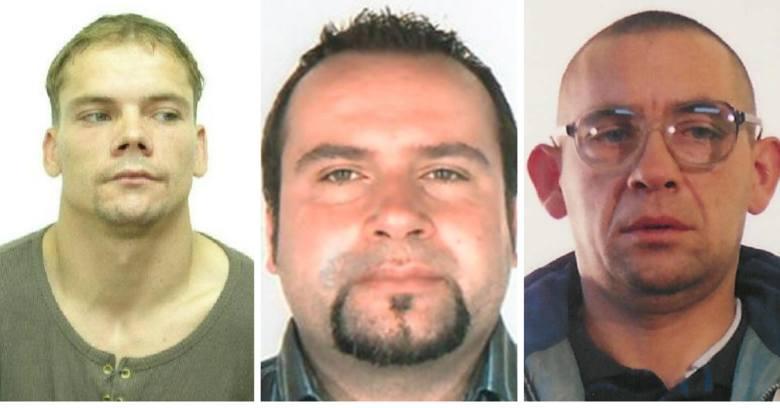 Oto zdjęcia i rysopisy przestępców, którzy aktualnie poszukiwani są przez kujawsko-pomorską policję. Sprawdź, czy kogoś rozpoznajesz. Wszystkie informacje